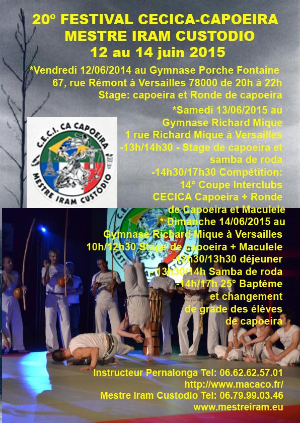 Affiche Festival2015